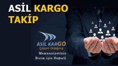 Photo of Asil Kargo Takip İşlemleri